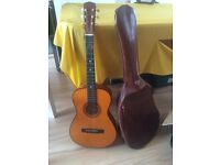 HI SPOT acoustic guitar