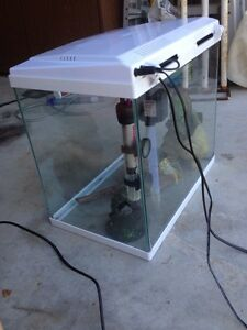 Fish tank NEED GONE Golden Beach Caloundra Area Preview