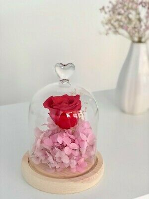 Mother's Day Gifts Crafts (Hand-crafted Preserved Fresh Rose Flower In Glass Dome - Gift/ Mother Day's)