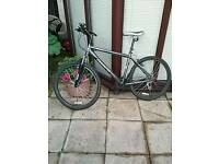 For sale MUDDY FOX ASCENT MOUNTAIN BIKE