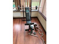 Gym equipment for sale - Bench and weights BARGAIN JOB LOT