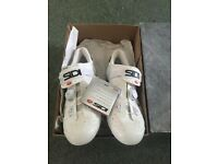 Sidi shoes (Scarpe wire carbon Vernice)