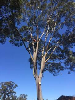Tree Lopping Business for Sale established over 20 years