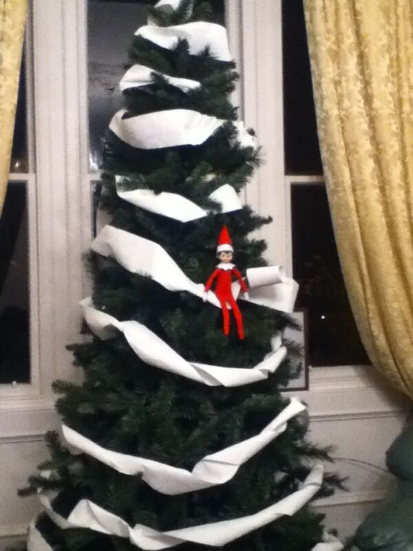 Our elf wrapped up our christmas tree in toilet paper
