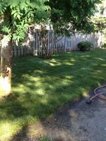 Grass cutting only or total property maintenace