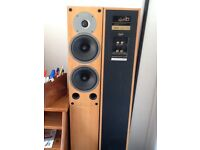 GALE TOWER SPEAKERS