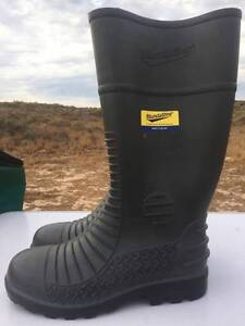 Brand new BLUNDSTONE Safety Toe Cap boots Perth Perth City Area Preview