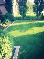 New Clients R welcome. Professional Lawn Care Services in YYC