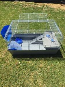 ♦♦♦ Delux 100cm Rabbit /Guinea Pig Indoor Plastic Cage ♦♦♦ Londonderry Penrith Area Preview