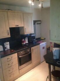 Ground Floor Studio Flat. Dumfries Town Centre. Suit Single Professional