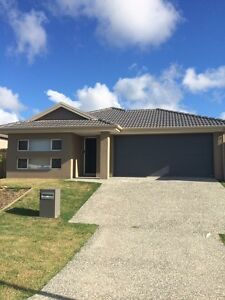 Break Lease Willow Vale Gold Coast North Preview