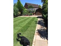 AJP LANDSCAPES, we cover all aspects of landscaping ,paving,brickwork,decking,lawns, free estimates,
