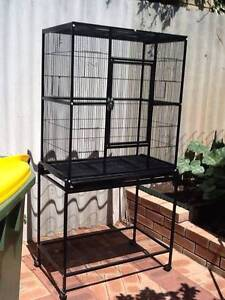 Black aviary Safety Bay Rockingham Area Preview