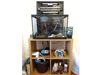 Aqua expert 70 aquarium, stand and accessories