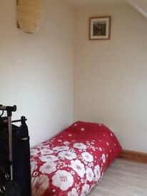 Cosy roomshare near Hove Station £298 inc bills