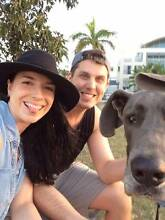 Dog Walking Couple Surfers Paradise Gold Coast City Preview