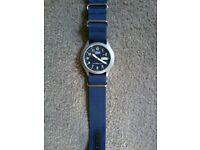 Blue Lorus watch