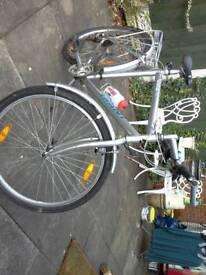 Cycle giant