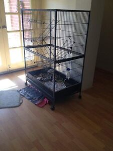 Large ferret cage Pearsall Wanneroo Area Preview