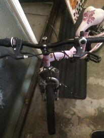 """20"""" Wheel Bike For Girls"""
