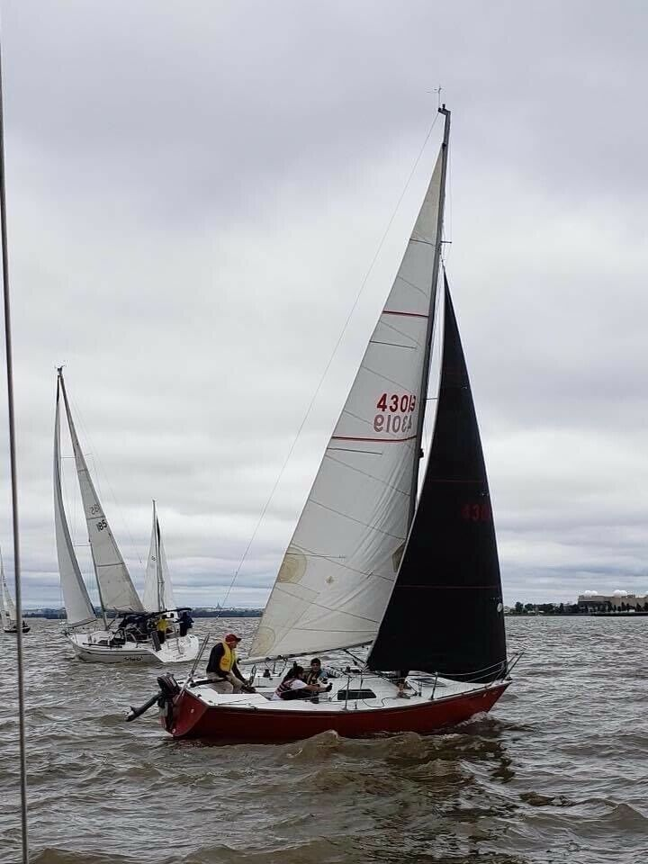 North 3Di RAW Racing Sail