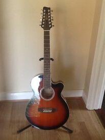 Copeland 12 string guitar