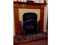 Fireplace and hearth free for collecting