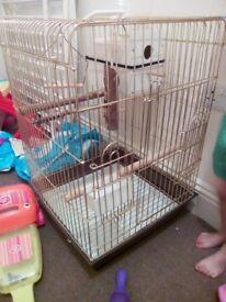 Cockatiel Bird cage £15