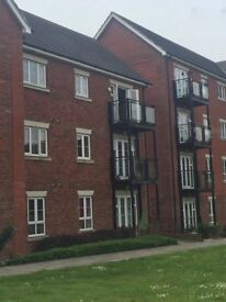 2 Bedroom Flat to rent in Rochester/ Strood ( popular Medway Gate)