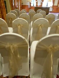 CHAMPAGNE organza sashes for sale