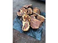 Pallet loads of burr Elm woodturning lathe blanks