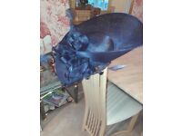 Blue wedding Hat. Only used once for 10 mins. in perfect condition. one size fits all.