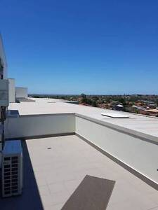 LIVE IN LUXURY APARTMENT Campsie Canterbury Area Preview