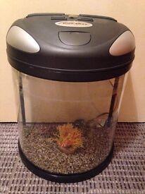 Semi-circle fish tank