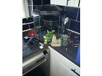 for sale 25 litre half hexagon fish tank