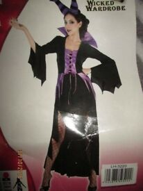 MALEFICENT STYLE EVIL QUEEN/WITCH FANCY DRESS OUTFIT SIZE 12/14 PARTY OR HEN DO