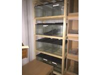 "15 x 18""x12""x12"" fish tanks on rack"