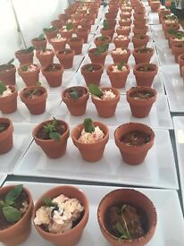 300 x Mini plant pots perfect for crafts, the garden or even your wedding dessert!