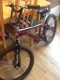 "Avigo Cursed 22"" Unisex Bike BMX - Only used a handful of times."