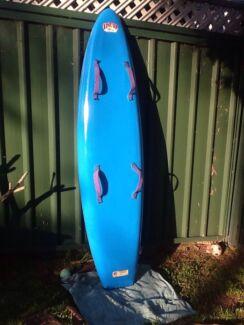 NIPPER BOARD FIBREGLASS (EPOXY) GOOD CONDITION Ryde Ryde Area Preview