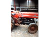 Massey Ferguson 135 in good original condition, only selling cause want something bigger