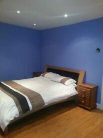 Lovely king sized room for rent in Ashford