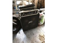 Warwick Pro Fet 3.2 300w head with Peavey 4x10 cab