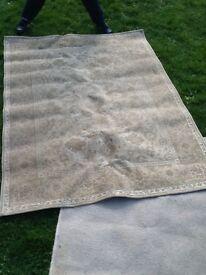 Beige / cream rug