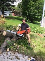 AFFORDABLE SAME DAY TREE SERVICE