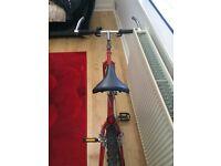 Gent's GIANT racing bike