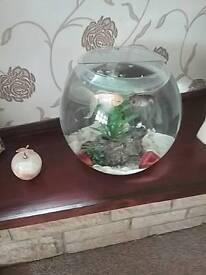 Fishtank/bowl