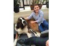 Petcare, Dogwalking/Dogsitting in Glasgow West