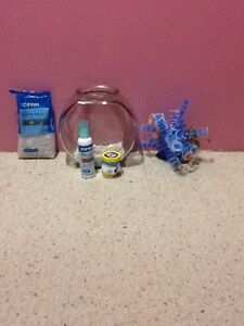 Betta fish care package