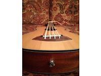 Ubass, fretless bass ukulele, electro/acoustic